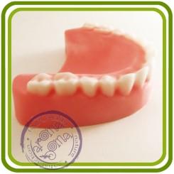 Зубы ровные (верхние) - 3D Авторская силиконовая форма для мыла, свечей, гипса, шоколада и пр.
