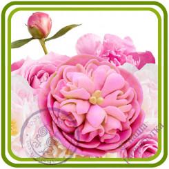 Пион 15 букетный. Роза пионовидная.  Авторская 3D силиконовая форма для мыла, свечей, шоколада, гипса и пр.