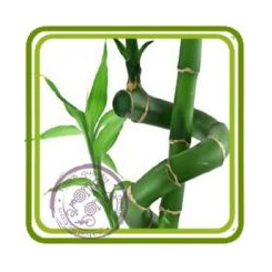 Бамбуковое молочко - отдушка парфюмерно-косметическая