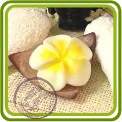 Скорлупа кокоса (ложемент) - 3D силиконовая форма для мыла, свечей, шоколада, гипса и пр.